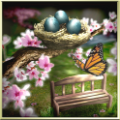 android-Spring Zen HD