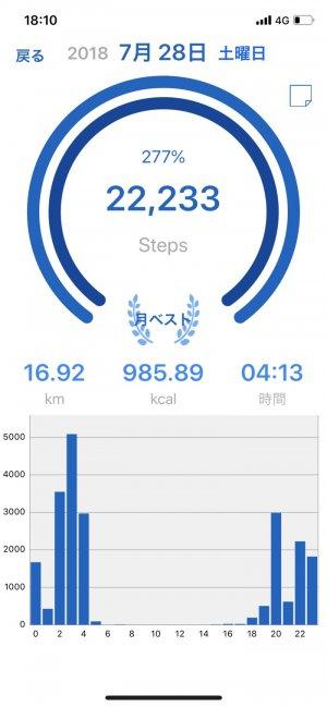 アプリ「歩数計Maipo」 過去データ