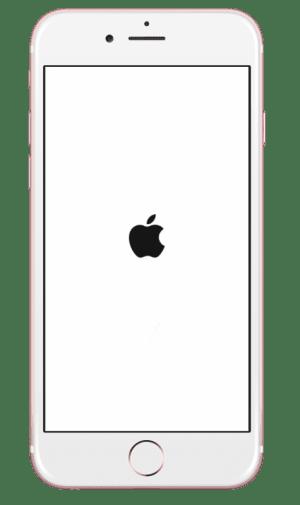 iPhone:Appleの林檎マーク