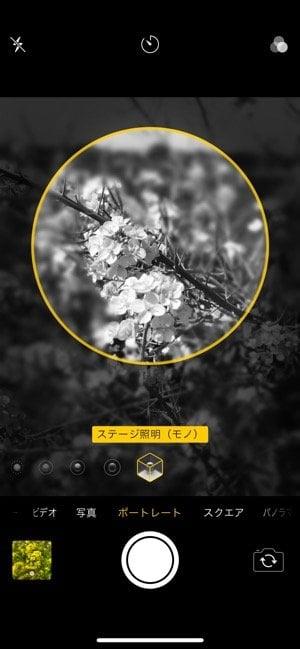 iPhoneカメラ:ポートレードモード