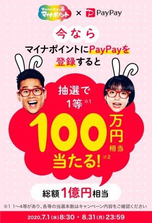 【マイナポイント】PayPay