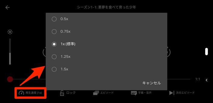 Netflix Android 再生速度コントロール