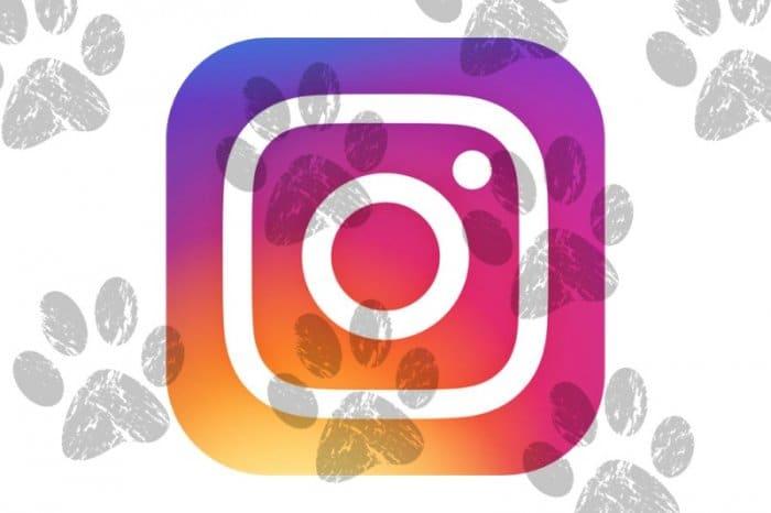 Instagram:足跡