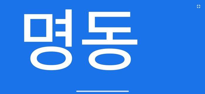 Google翻訳 全画面表示