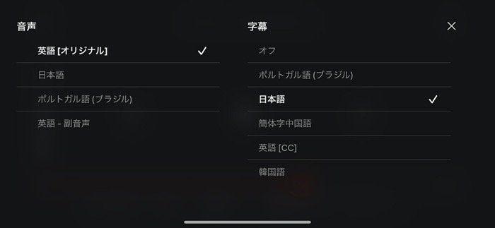 Netflix 字幕設定