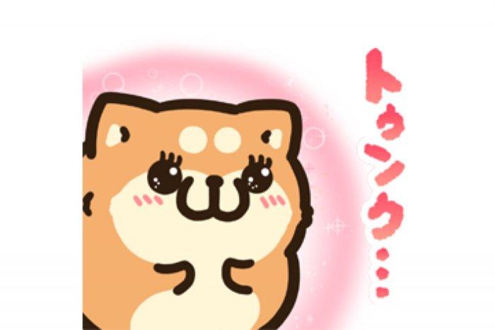 【LINE無料スタンプ】『タイムラインで使える★ボンレス犬と猫』が登場、配布期間は12月2日まで