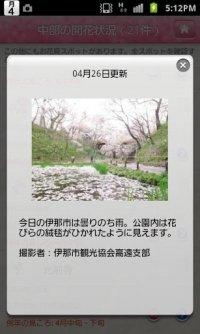 るるぶお花見特集2013