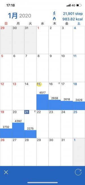 アプリ「歩数計Maipo」 月間データ
