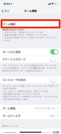 設定 ズーム iPhone