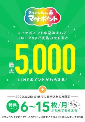 【マイナポイント】LINE Pay