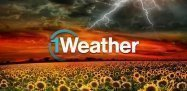 「1Weather」デザイン性×機能性を両立、見た目重視派も納得の天気予報アプリ #Android