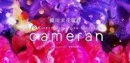 女子必携「cameran 蜷川実花監修カメラアプリ」がリリース、独特の鮮やかな世界観を表現できる