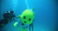 [動画]ふなっしー、はじめて海に潜る