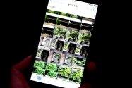 iPhoneの写真を隠す(非表示)方法まとめ──「ピープル」の消し方や隠密管理できる電卓アプリも紹介