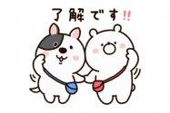 【LINE無料スタンプ】『家族と使おう☆ガーリーくまさん×進研ゼミ』が登場、配布期間は6月29日まで