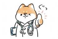 【LINE無料スタンプ】『ほんわかしばいぬ × LINEヘルスケア』が登場、配布期間は8月26日まで