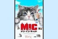猫になって人生の大切なことに気づく、『メン・イン・キャット』は可愛いだけの映画じゃない
