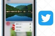 Twitterで画像を保存する方法まとめ 一括ダウンロードも可能【iPhone/Android/PC】