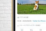 Twitterで「タグ付け」する方法──タグ付けできない要因や通知されるかなど解説