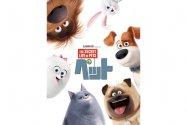 飼い主のいぬ間にやりたい放題? 知られざるペットの日常をユーモアたっぷりに描くアニメ映画『ペット』