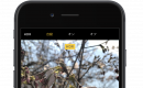 iPhoneカメラの「HDR」とは? 写真が重複して2枚保存されてしまう現象と深い関係あり